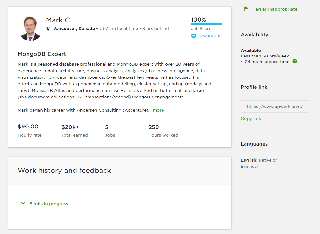 Example of Upwork profile